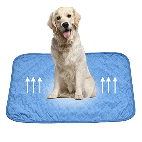 Gorgebuy Dog Cooling Mat Cool Pad Keep your Pets Cool and Calm Cooling pads...