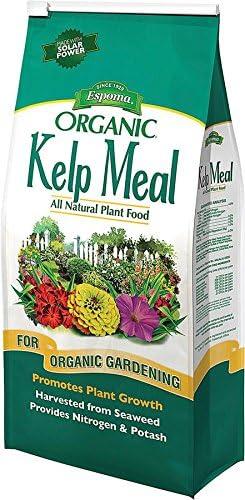 2 Pack Espoma KM4 Organic Traditions Kelp Meal 1-0-2-4 lb Bag