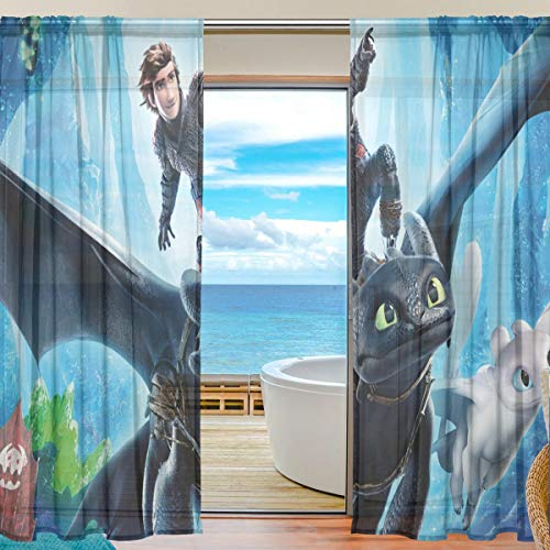 Train Window - Meroy Fowler How to Train Dragon Master Anime Sheer Curtains Drapery Window Treatment Curtain (2 Panels Each 55 x 78 Inch) for Living Room Voile Drapes Bedroom Kitchen Window
