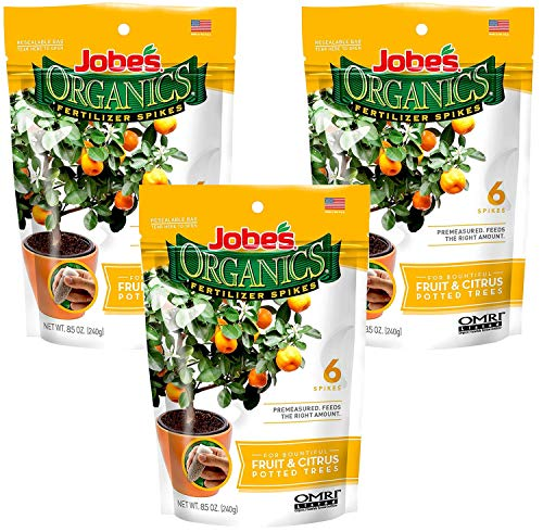 Jobe's Organics Fruit & Citrus Tree Fertilizer Spikes, 3-5-5 Time Release Fertilizer for All Container or Indoor Fruit Trees, 6 Spikes per Package (3) (Best Indoor Fruit Trees)