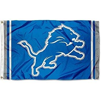 WinCraft Detroit Lions New Logo ...