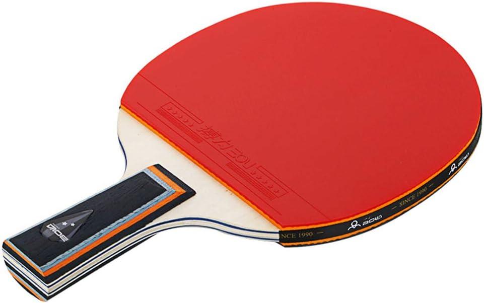 Arichtop Mesa de Ping Pong 2 Conjunto del Jugador de Raqueta Dos Dos Bolas Escuela de Origen Sports Club de Doble Cara de Goma Principiante Paleta de Ping Pong
