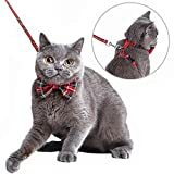 Best Cat Harnesses - Mihachi Cat Harness Adjustable with Removable Bowtie-for Kitty Review