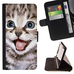 Momo Phone Case / Flip Funda de Cuero Case Cover - Tiny Peque?o Gatito Fur Pet Maine Coon; - Apple Iphone 6 PLUS 5.5