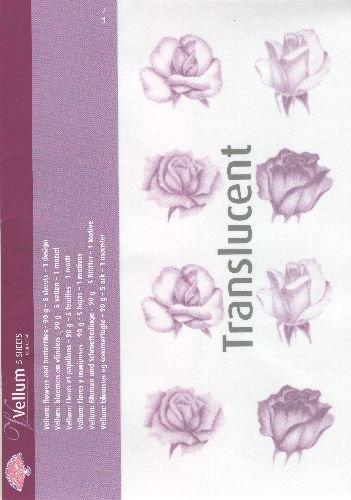 - Vellum Roses Purple