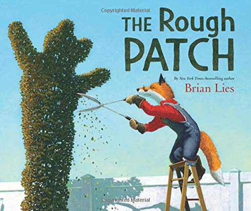 Image result for rough patch lies amazon