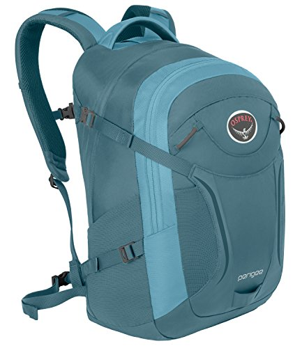 Osprey Packs Perigee Daypack, Liquid Blue