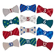 Pearhead Felt Bowtie First Year Monthly Milestone Photo Sharing Baby Belly Stickers, 1-12 Months (Navy, Red, Gray)