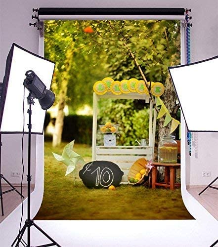 CdHBH 5x7ft Outdoor 10th Birthday Party Snake Car Grass Wooden Basket Banner Windmill Can Balloon Festival Venue Party Arrangement Photo Studio Photo Photography Background