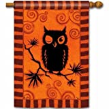 Hoot Owl House Flag Review