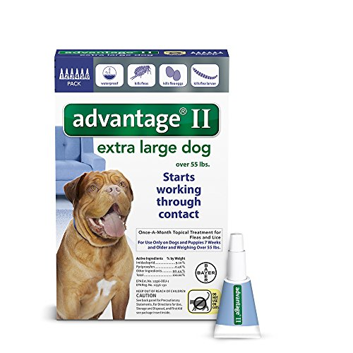 Advantage II for Dogs Over 55 lbs – 6 pack