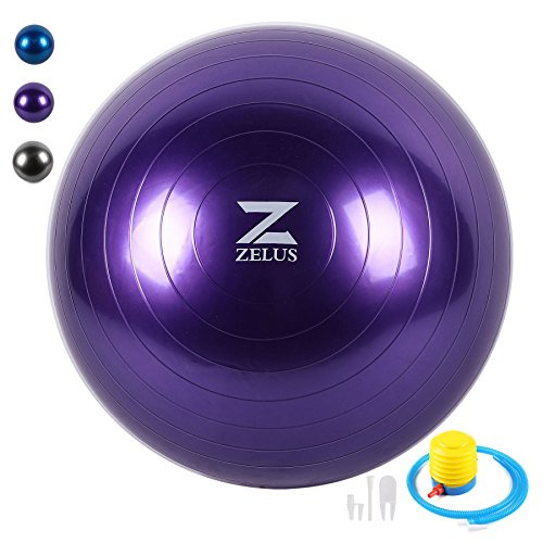 Z ZELUS Exercise Yoga Ball 65cm/75cm with Pump, Heavy-Duty Anti-Burst Yoga Ball for Yoga Fitness Strength Exercise Workout, High Weight Capacity (Purple, 65cm) by Z ZELUS
