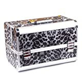 Gracefulvara Pro Makeup Cosmetic Train Case with Cosmetics Eyeshadow Powder Brush¡­