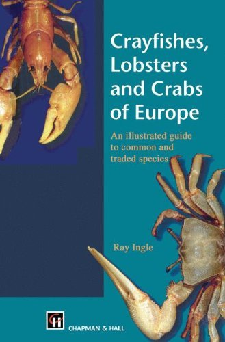 Europa Lobster - Crayfishes, Lobsters and Crabs of Europe: An Illustrated Guide to common and traded species