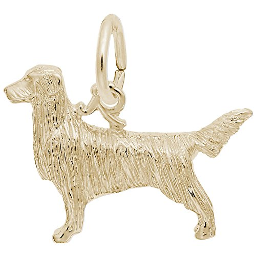 - Rembrandt Charms, Golden Retriever, 22k Yellow Gold Plated Silver