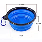 SYSTOND Collapsible Travel Dog Bowl Food Grade Silicone Bowl Foldable and Portable Pet Food Water Bowl with A Hook(Blue)