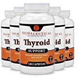 5 Pack of Thyroid Support Supplement - Iodine, Zinc & Selenium Supplement - Natural Weight Loss - 120 Capsules Each