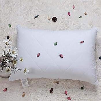 Amazon Com White Goose Feather Bed Pillow 600 Thread