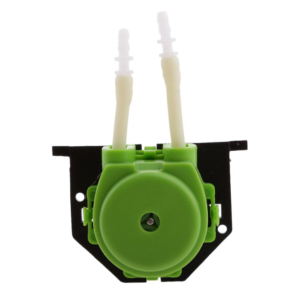 Verde IPOTCH Bomba Perist/áltica para Fluidos Limpios Est/érile de 24V Interruptor de Encendido Apagado