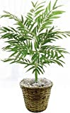 3' Phoenix Palm Plant Artificial Silk Tree Bush In Basket Pot Areca Date Bamboo
