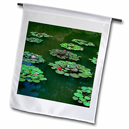 3dRose Danita Delimont - Lakes - USA, Oregon, Shore Acres State Park, Cultivated water lilies bloom. - 18 x 27 inch Garden Flag - Images Acres Green