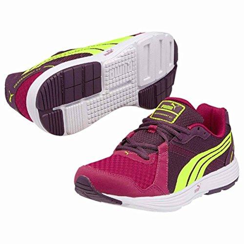 Shoes cerise Puma 14 Wns Descendant purple purple potent cerise potent v2 15 rArx7wqzF