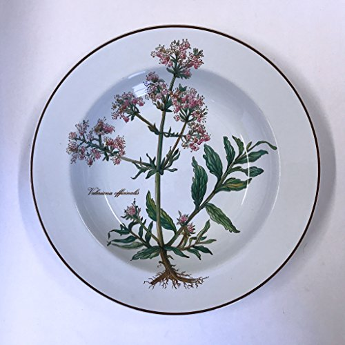 Villeroy and Boch Botanica Rimmed Soup Bowl Valeriana officinalis 8-3/4-inches Multicolored - Boch Tableware