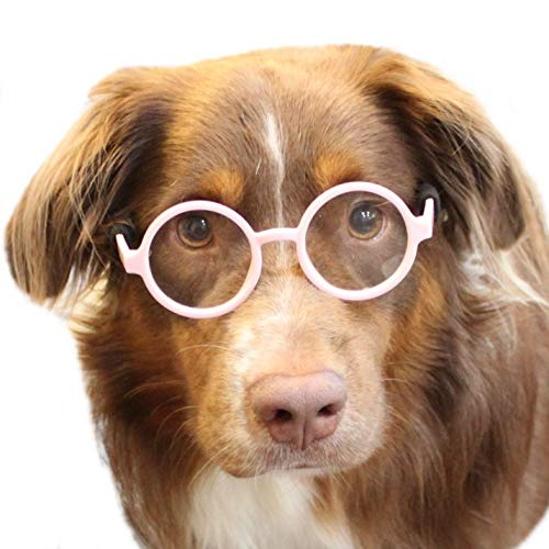 Style Vault 003 Dog Clear Lens Round Glasses for Costume Party & Photo Shoot (Pink-Clear)