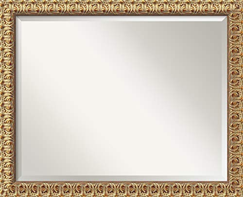 Amanti Art Framed Mirrors for Wall | Florentine Gold Mirror for Wall -