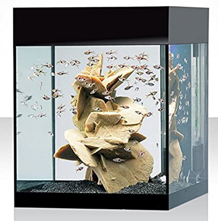 Acquario kit m absolute black  askoll acquario nero AA350005