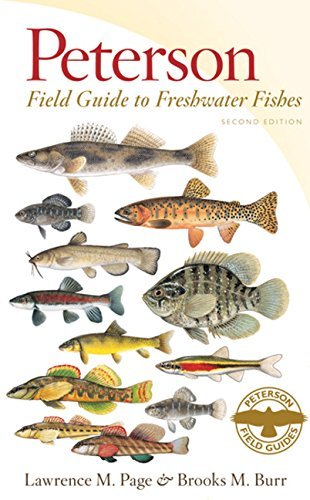 Peterson Field Guide to Freshwater Fishes of North America North of Mexico (Peterson Field Guides (Paperback)) by Lawrence M Page (2011-04-21)