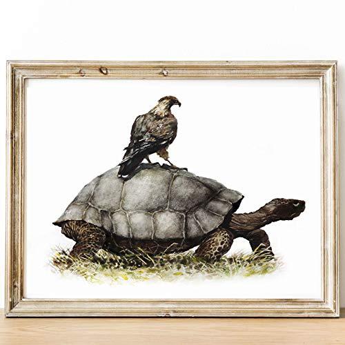 (Galapagos Tortoise Hawk Art Print 8x10 in Watercolor Painting Nursery wall art decor kid room Wildlife Woodchuk Animal illustration aquarelle poster 8 x 10 inches Unframed )