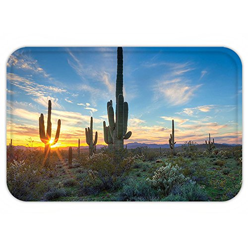 Costumes West Palm Beach (VROSELV Custom Door MatSunset Landscape Saguaro CactuDecor Sunshine Setting Between CactuSpineMagical Noon Wild West Design Art Green Blue)