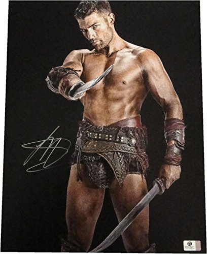 Liam McIntyre Signed Autograph 11x14 Photo Very Hot Spartacus GA 706734