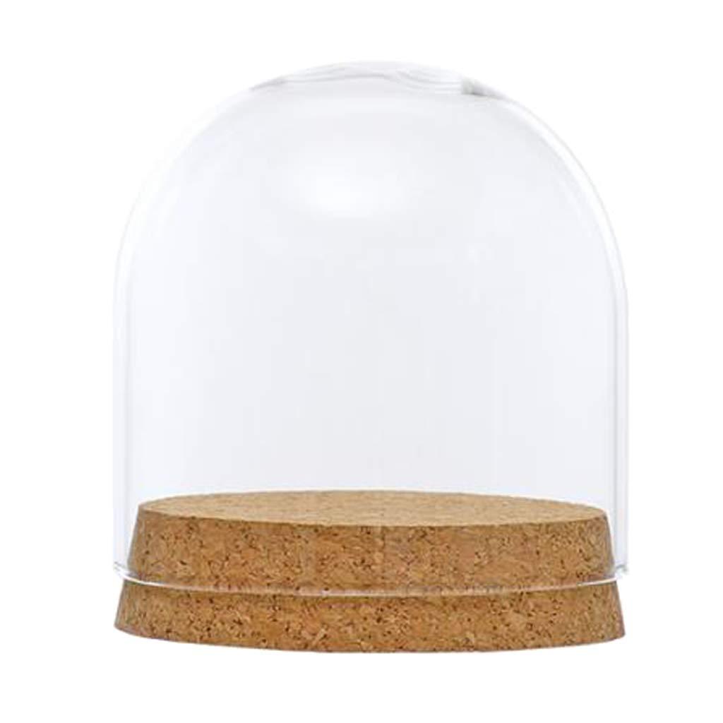 B Blesiya 2x Couvercle en Verre Clair D/ôme Cloche Cork Base Table Decor 8x8cm