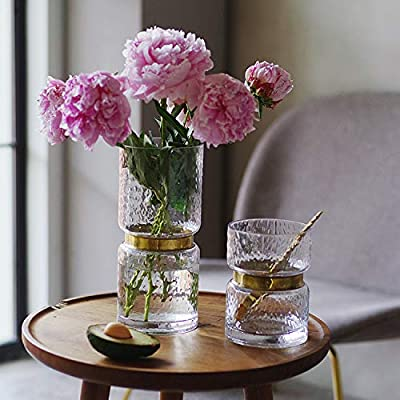 Buy Cyl Home Vases Cylinder Clear Hammered Glass Flower Arrangement Vase Brass Gold Band Decor Dining Table Centerpieces Gifts For Wedding Housewarming Party 6 3 H X 4 7 D Online In Indonesia B07h4z7g1d