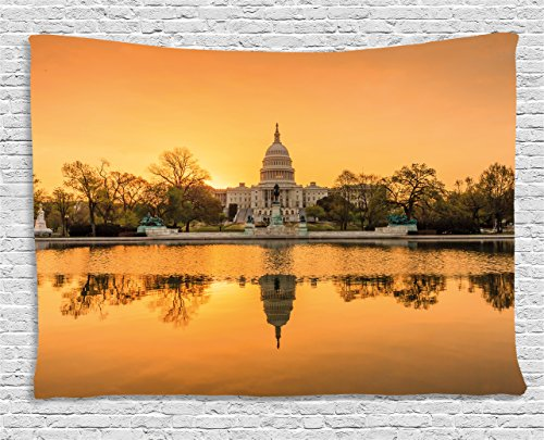 Ambesonne United States Tapestry, Washington DC American Capital City White House Above The Lake Landscape, Wall Hanging for Bedroom Living Room Dorm, 60 W X 40 L Inches, Apricot Ginger