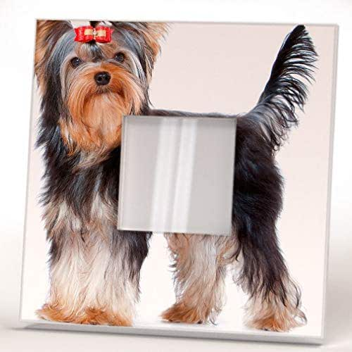 Bridal Shoes Yorkshire: Amazon.com: Yorkie Dog Yorkshire Terrier Wall Framed