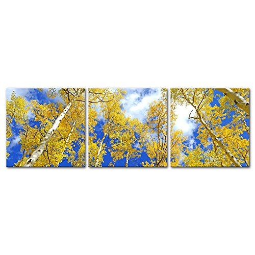 Wall Art Decor Poster Painting On Canvas Print Pictures 3 Pieces Autumn Foliage Aspen Trees in Fall Colors Blue Sky Forest Landscape Framed Picture for Home Decoration Living Room Artwork