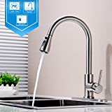 Hpbge Single Handle Pull Out Kitchen Faucet, Single Level Brushed Nickel Stainless Steel Kitchen Sink Faucets with Pull Down Sprayer