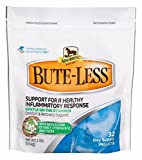 Product review for B-L BUTE-LESS Pellets Horse Pony Comfort Recovery Support Devil's Claw Yucca 2#