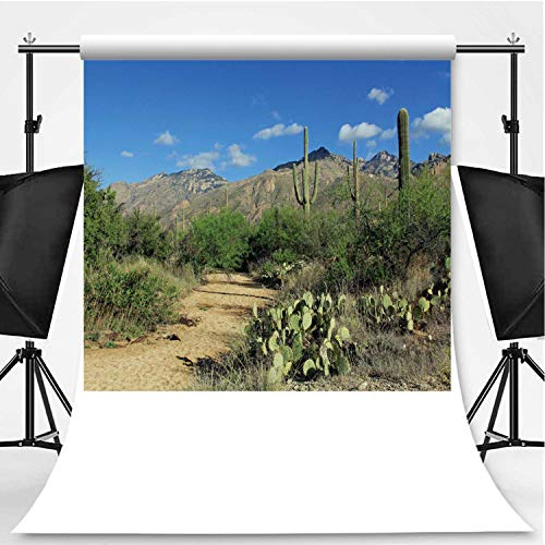 Hiking Trail in Bear Canyon in Tucson Photography Backdrop,AZ for Television,Flannelette:5x7ft