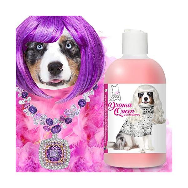 The Blissful Dog Drama Queen Dog Shampoo 4