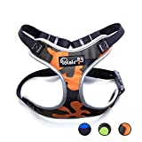 Potalay Front Range No Pull Reflective Adjustable Dog Vest Harness With Handle – Oxford Material Vest for Dogs Comfort Control for Small Medium Large Dogs in Training &Walking Orange XL