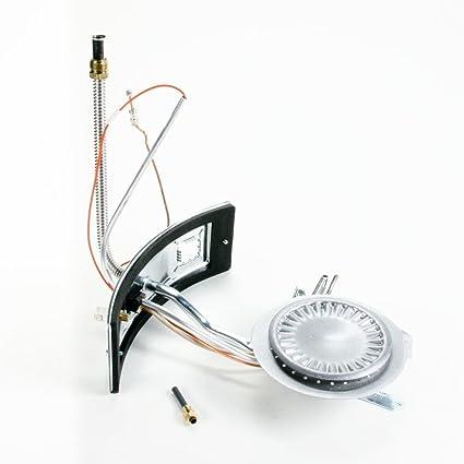 Kenmore 9006620 calentador de agua colector puerta y piloto Asamblea