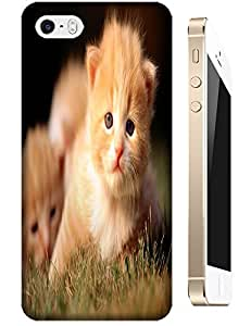 Baby Cats play on the glass together cell phone cases for Apple Accessories iPhone 5/5S