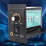 Roadiress AC Motor Speed Controller Electric Motor