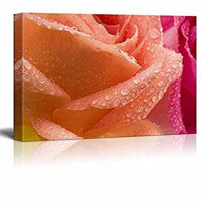 Canvas Prints Wall Art - Coral and Pink Roses with Water Droplets | Modern Wall Decor/Home Decoration Stretched Gallery Canvas Wrap Giclee Print. Ready to Hang - 24