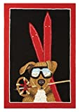 Peking Handicraft Dog with Ski Gear Area Rug Pillow, Red/Brown