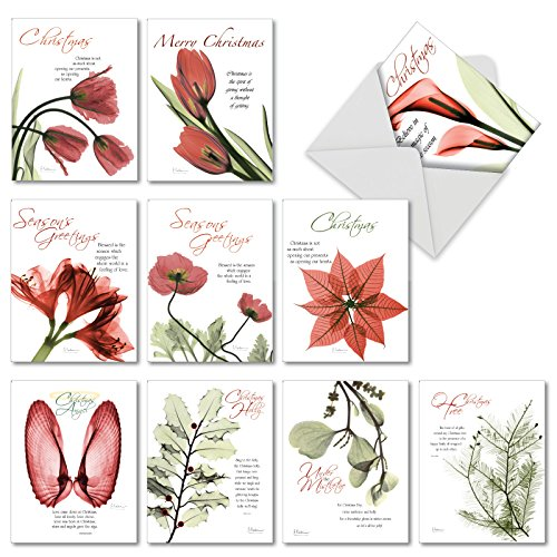 AM6219XTG-B1x10 Blooming Christmas Spirit: Assorted Christmas Thank You Cards Featuring Tulips Opening Up to the Spirit of Christmas, with Envelopes.